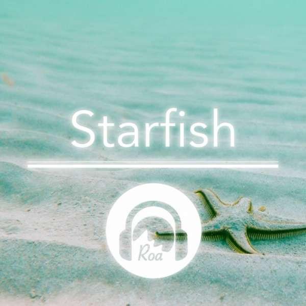 Roa - Starfish