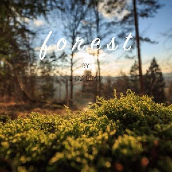 LiQWYD - Forest