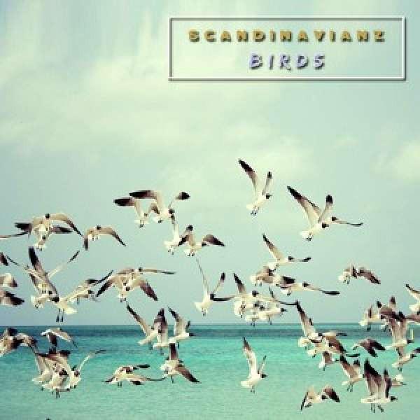 Scandinavianz - Birds