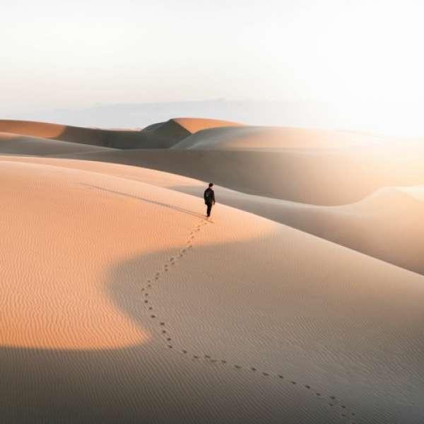 yoitrax - Desert