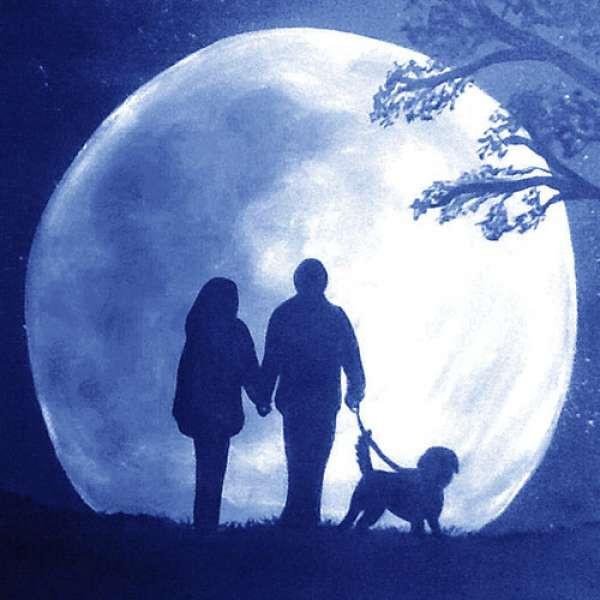 Purrple Cat - Moonlit Walk